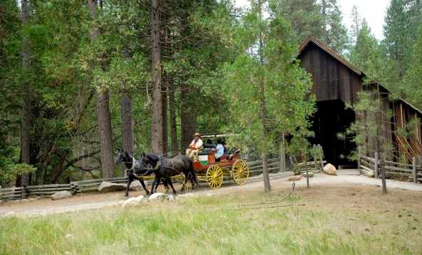 Stagecoach rides at Pioneer Yosemite History Center. Photo by