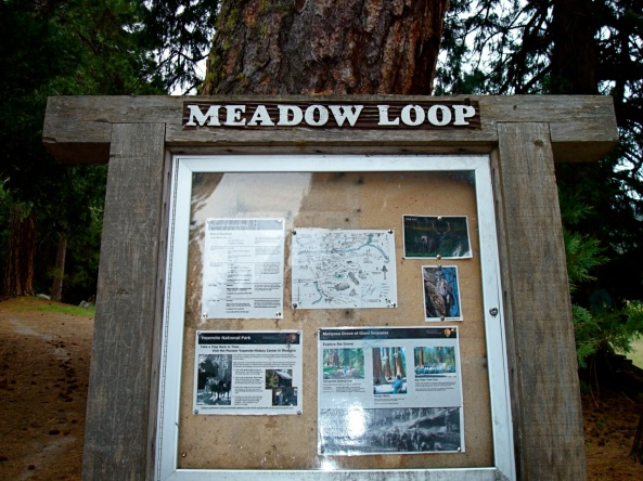 wawona_meadow_loop_sign_2010_michelle_hansen