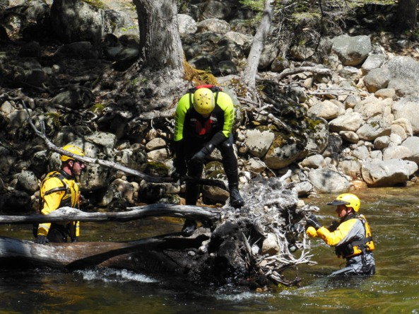 Downed trees in a river can be an additional hazard because water flows through them and can pin someone underwater on their upstream side.  Here rescuers demonstrate the search strategies around this fallen tree.