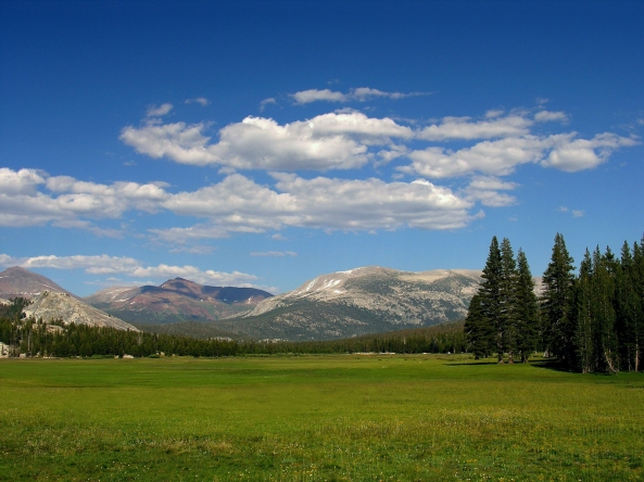 Tuolumne Meadows in Yosemite National Park