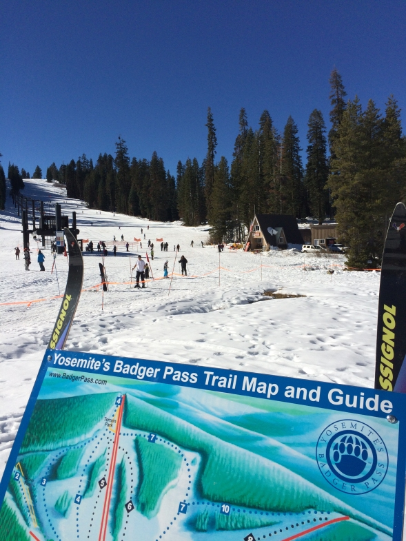 2014 Bagder Pass Trails Sign