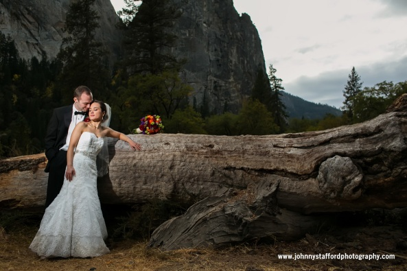Yosemite Wedding Couple