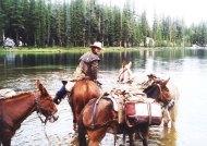 horses-in-lake